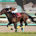 【競馬】それでは武豊騎手の今秋G1騎乗馬をご覧下さい