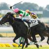 【競馬ニュース】昨年の2歳王者リオンディーズが引退☆ブリーダーズSSで種牡馬に