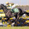 【競馬情報】安藤勝己 桜花賞、 オークスが見える「3歳牝馬番付」